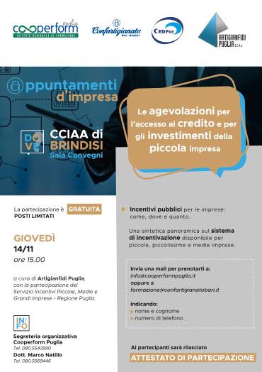 Le agevolazioni per l'accesso al credito e per gli investimenti della piccola impresa